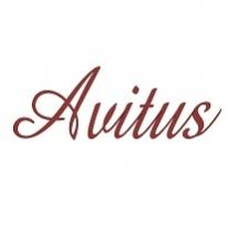 Центр развития Avitus