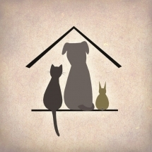 Saaremaa Pet Shelter: help us take care of pets in Saaremaa