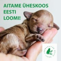 Поможем животным Эстонии вместе!