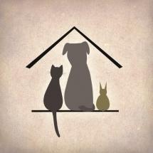 MTÜ Saaremaa Lemmikloomade Turvakodu: aita hoolitseda Saaremaa loomade eest