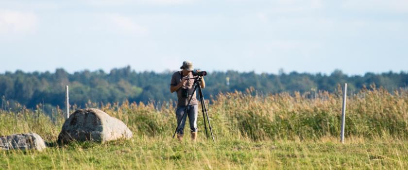 Estonian Ornithological Society: For Estonian birds!
